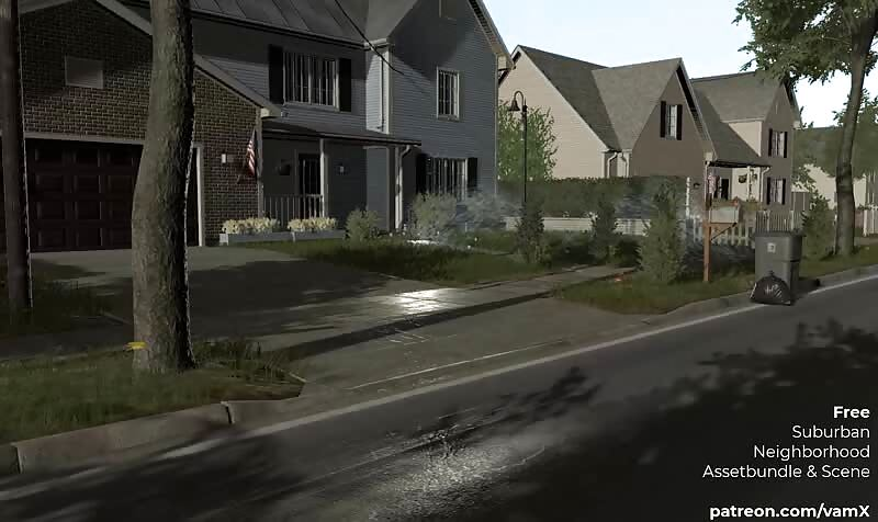 vamX Neighborhood Environment